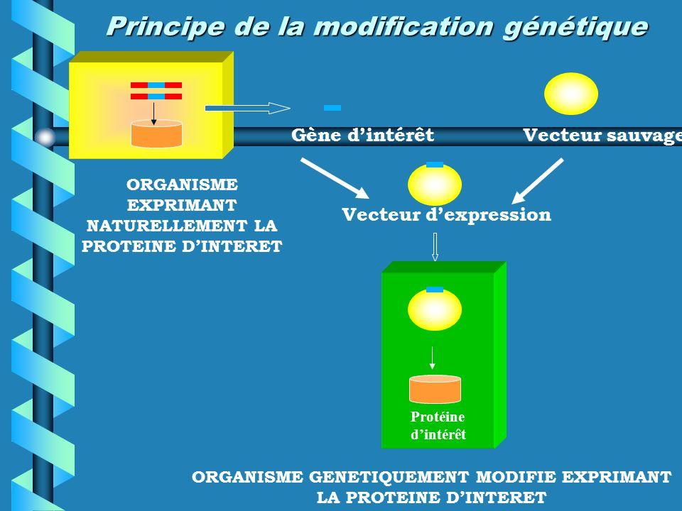 Système de banque cellulaire 1 clone 1 clone 1 MCB (Master Cell Bank) MCB 1 WCB 1 Tube 1 MCB 1 WCB 1 Tube 1 Tube 2 Tube 2 Tube y Tube y MCB 2 WCB 2 MCB 2 WCB 2 MCB y WCB y MCB y WCB y
