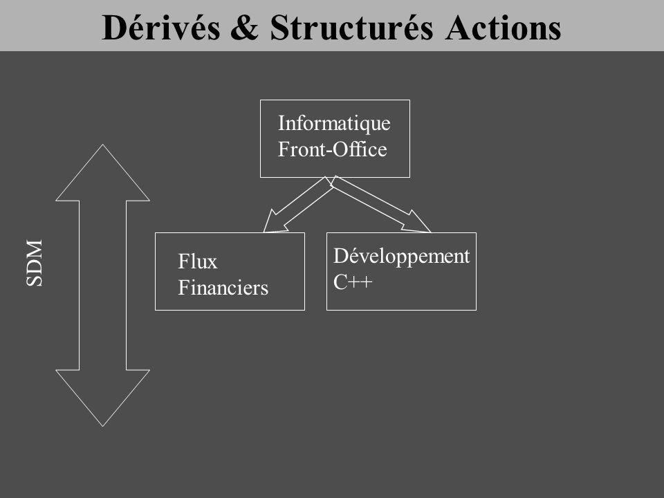 Informatique Front-Office Flux Financiers Développement C++ SDM Dérivés & Structurés Actions