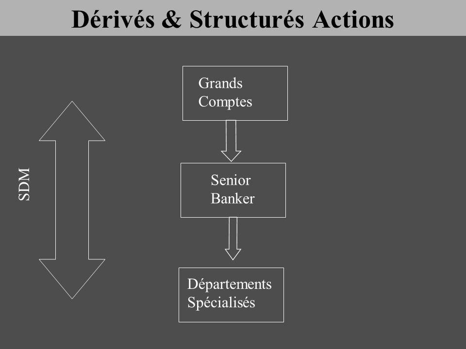 Senior Banker Grands Comptes Départements Spécialisés SDM Dérivés & Structurés Actions