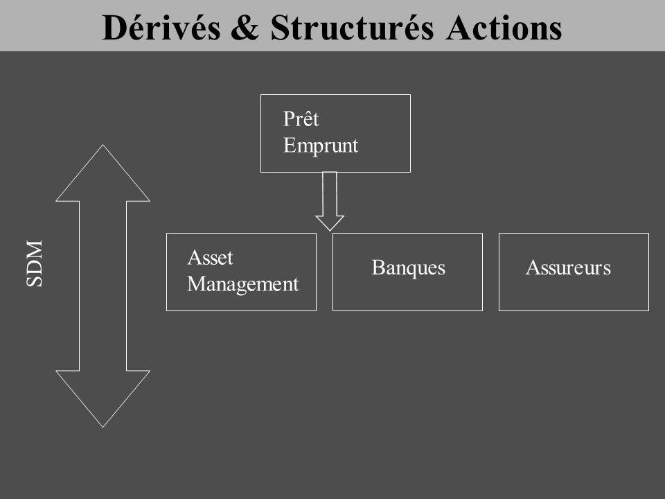 Asset Management Prêt Emprunt BanquesAssureurs SDM Dérivés & Structurés Actions