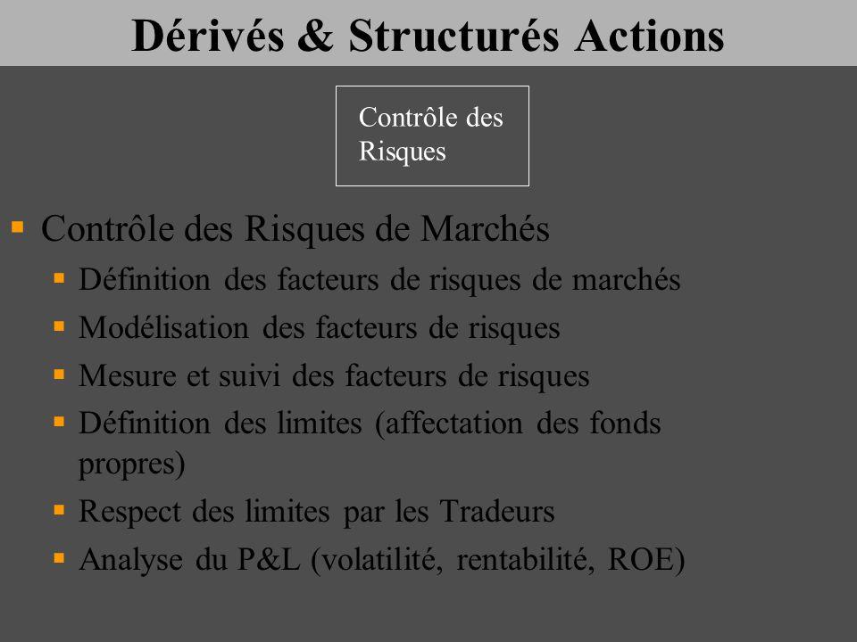 Dérivés & Structurés Actions Contrôle des Risques de Marchés Définition des facteurs de risques de marchés Modélisation des facteurs de risques Mesure