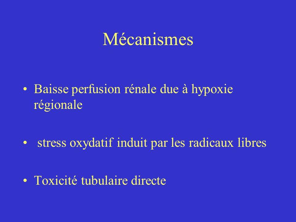 Mécanismes Baisse perfusion rénale due à hypoxie régionale stress oxydatif induit par les radicaux libres Toxicité tubulaire directe