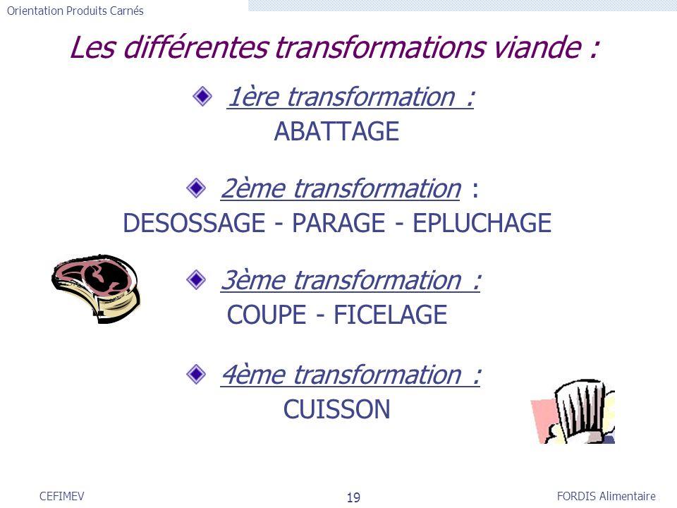 FORDIS Alimentaire Orientation Produits Carnés 19 CEFIMEV Les différentes transformations viande : 1ère transformation : ABATTAGE 2ème transformation