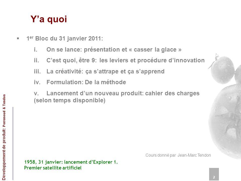 Ya quoi 1 er Bloc du 31 janvier 2011: i.On se lance: présentation et « casser la glace » ii.Cest quoi, être 9: les leviers et procédure dinnovation ii