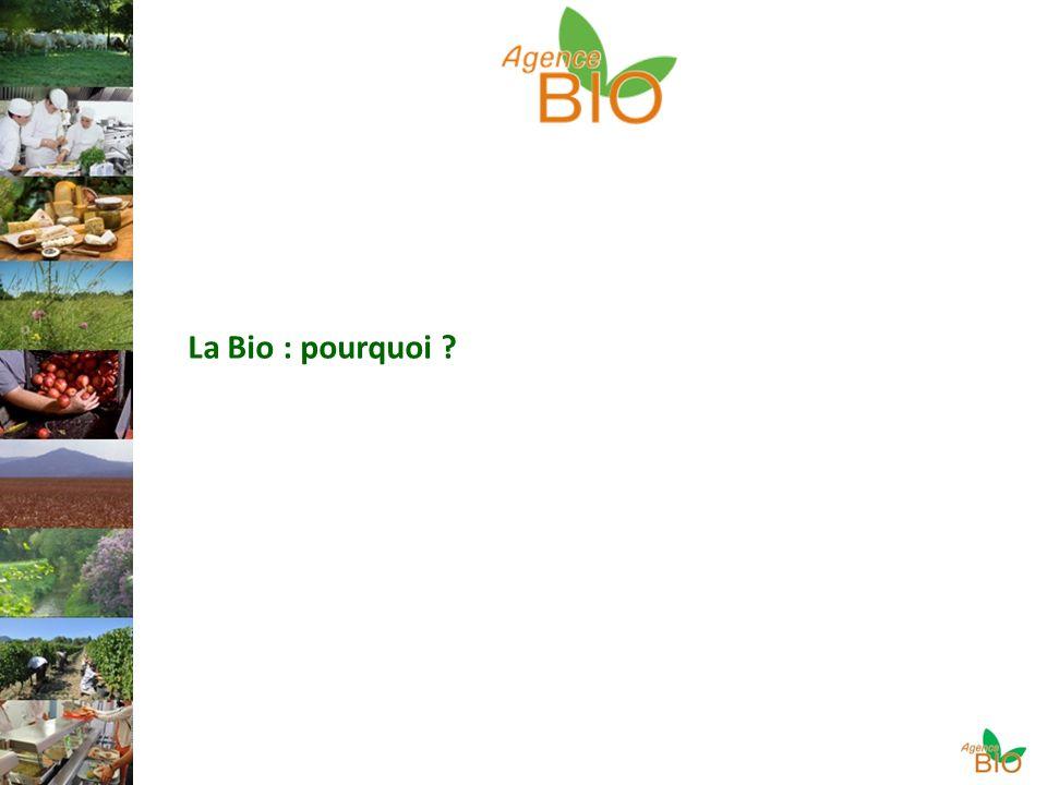 La Bio : pourquoi ?