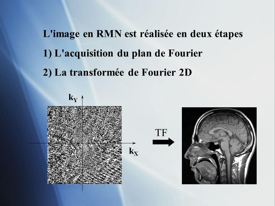 kYkY kXkX TF L'image en RMN est réalisée en deux étapes 1) L'acquisition du plan de Fourier 2) La transformée de Fourier 2D