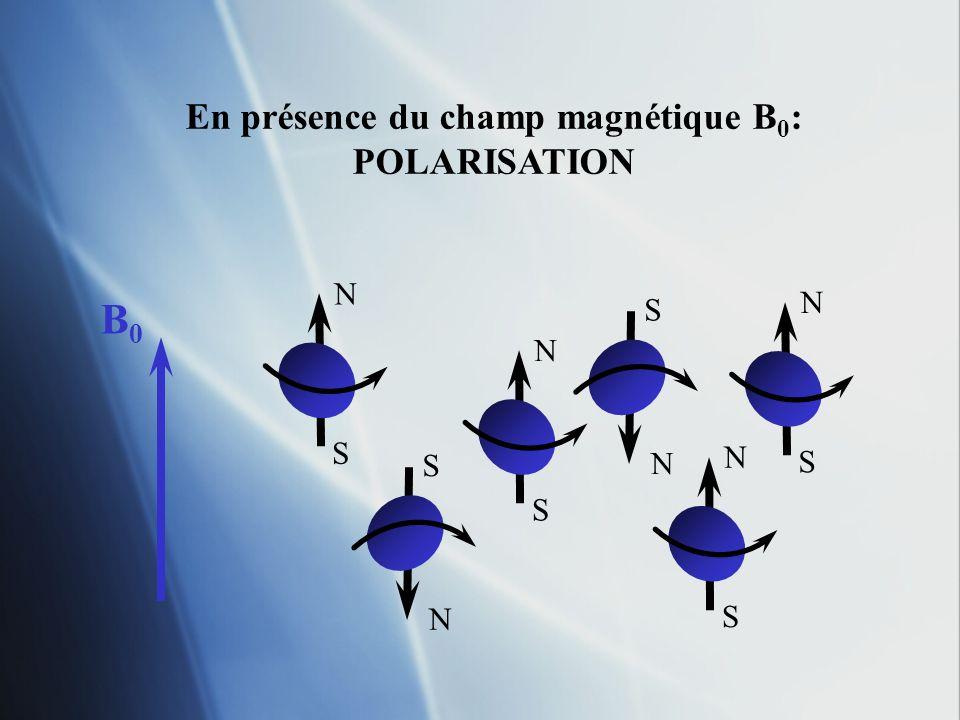 En présence du champ magnétique B 0 : POLARISATION N S N S N S N S N S N S B0B0