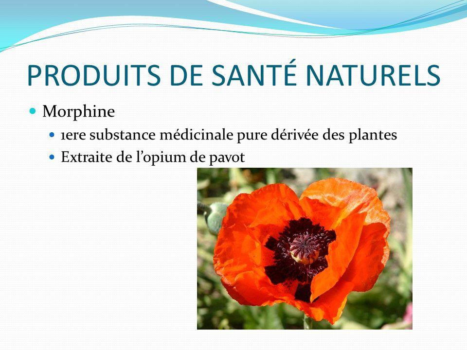 PRODUITS DE SANTÉ NATURELS Morphine 1ere substance médicinale pure dérivée des plantes Extraite de lopium de pavot