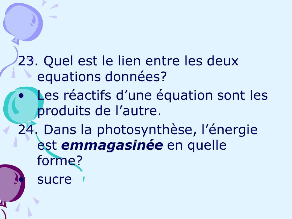 23. Quel est le lien entre les deux equations données? Les réactifs dune équation sont les produits de lautre. 24. Dans la photosynthèse, lénergie est
