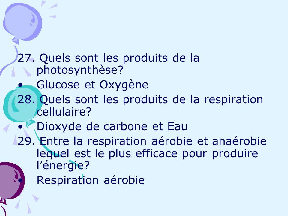 27. Quels sont les produits de la photosynthèse? Glucose et Oxygène 28. Quels sont les produits de la respiration cellulaire? Dioxyde de carbone et Ea