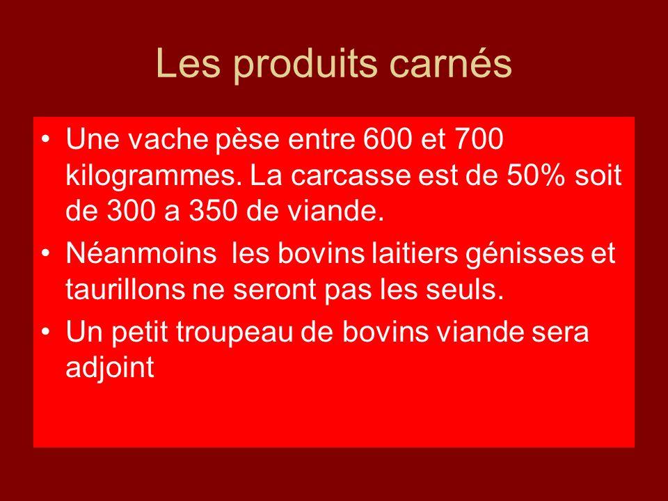 Les produits carnés Une vache pèse entre 600 et 700 kilogrammes. La carcasse est de 50% soit de 300 a 350 de viande. Néanmoins les bovins laitiers gén