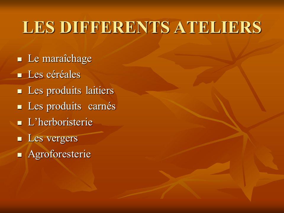 LES DIFFERENTS ATELIERS Le maraîchage Le maraîchage Les céréales Les céréales Les produits laitiers Les produits laitiers Les produits carnés Les prod