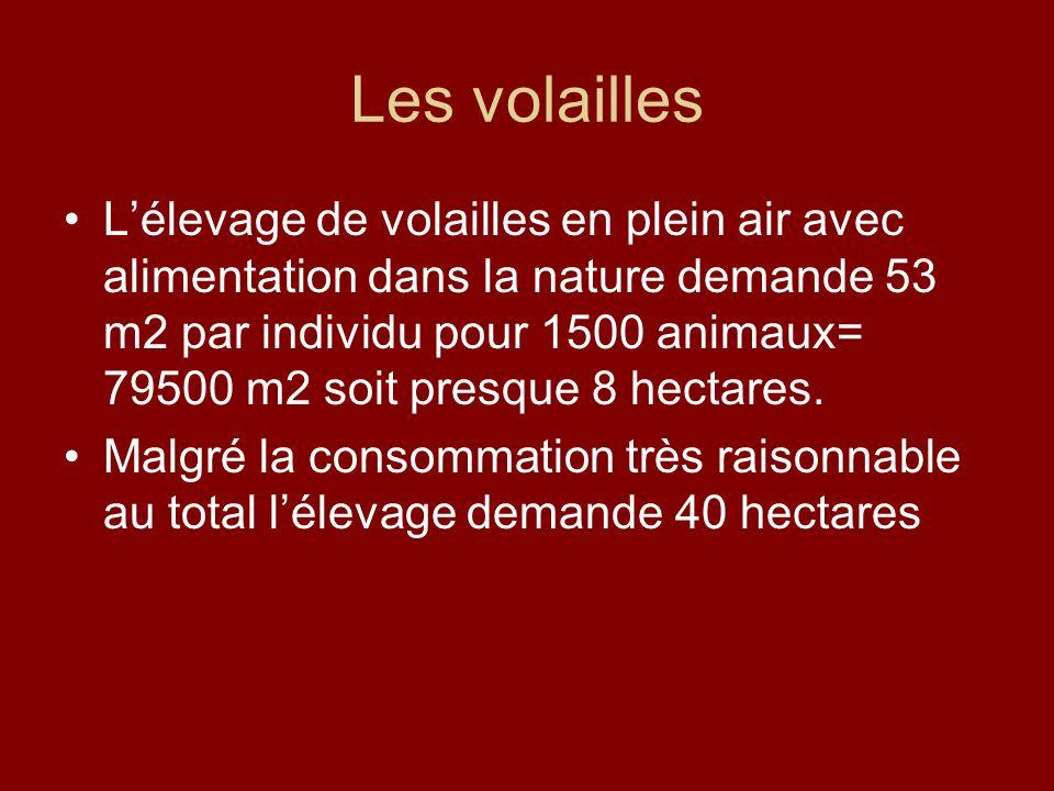 Les volailles Lélevage de volailles en plein air avec alimentation dans la nature demande 53 m2 par individu pour 1500 animaux= 79500 m2 soit presque
