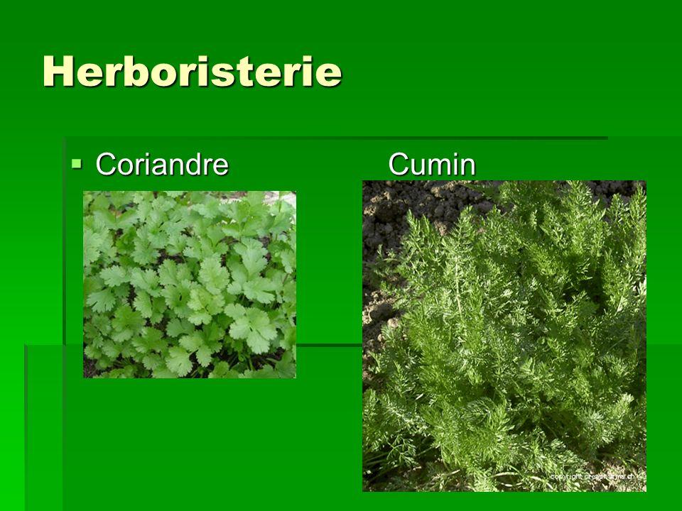 Herboristerie Coriandre Cumin Coriandre Cumin