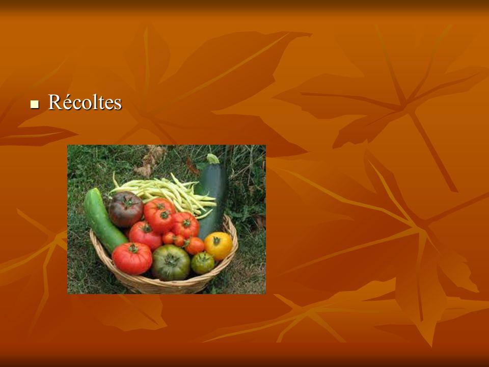 Récoltes Récoltes