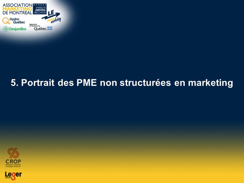 5. Portrait des PME non structurées en marketing