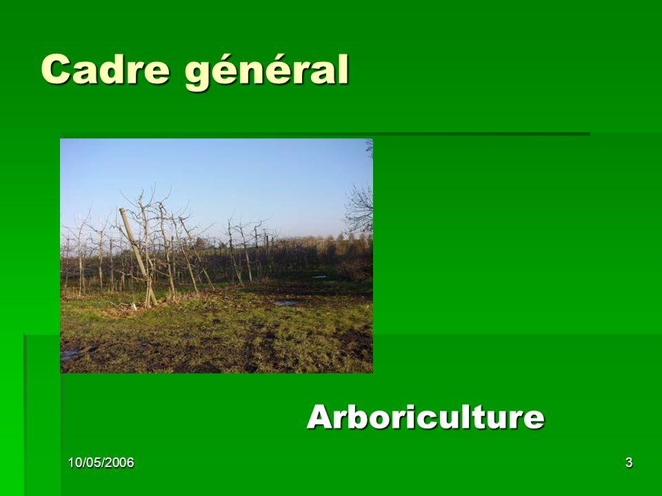 10/05/20063 Cadre général Arboriculture