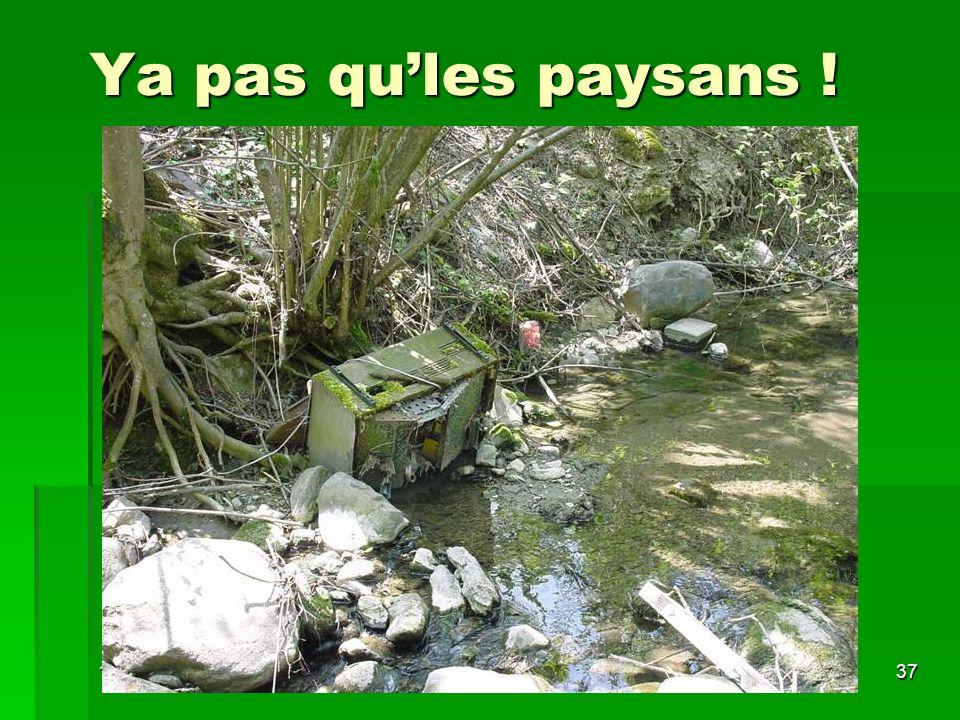 10/05/200637 Ya pas qules paysans !