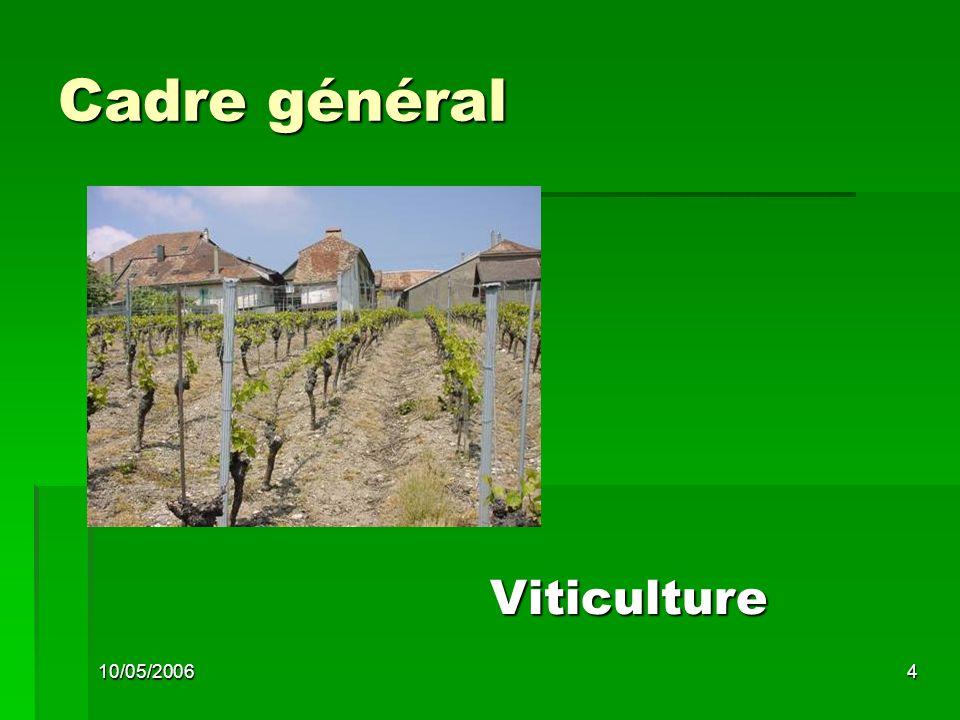 10/05/20064 Cadre général Viticulture