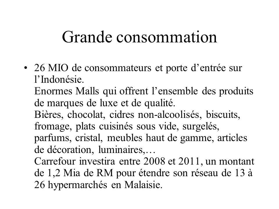 Grande consommation 26 MIO de consommateurs et porte dentrée sur lIndonésie.