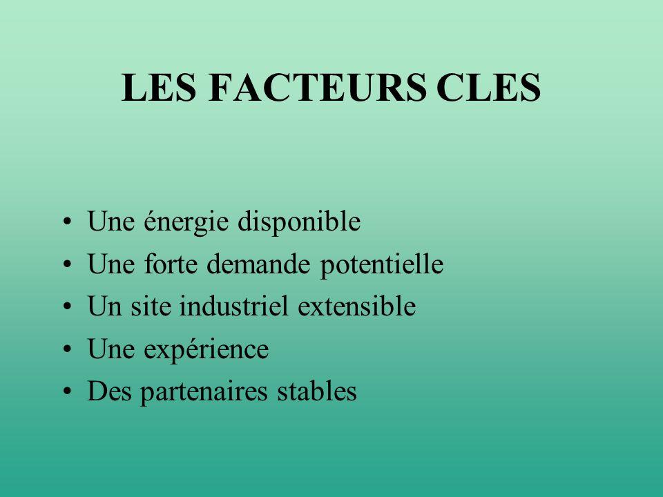 LES FACTEURS CLES Une énergie disponible Une forte demande potentielle Un site industriel extensible Une expérience Des partenaires stables