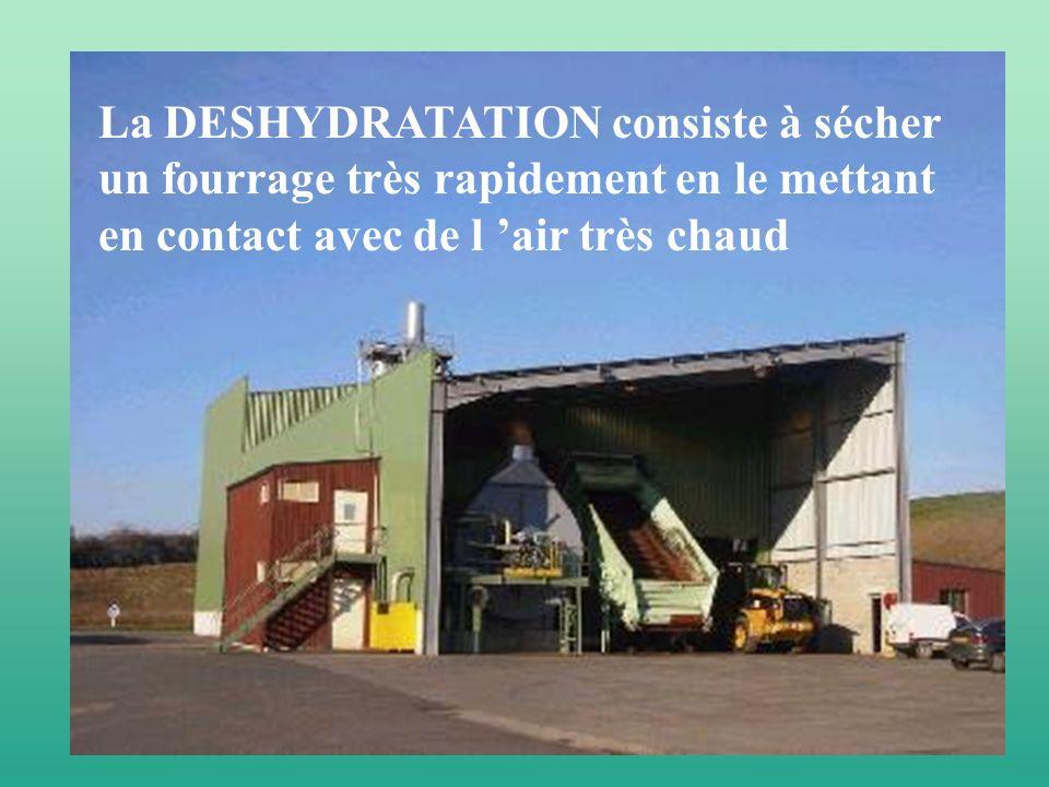 La DESHYDRATATION consiste à sécher un fourrage très rapidement en le mettant en contact avec de l air très chaud