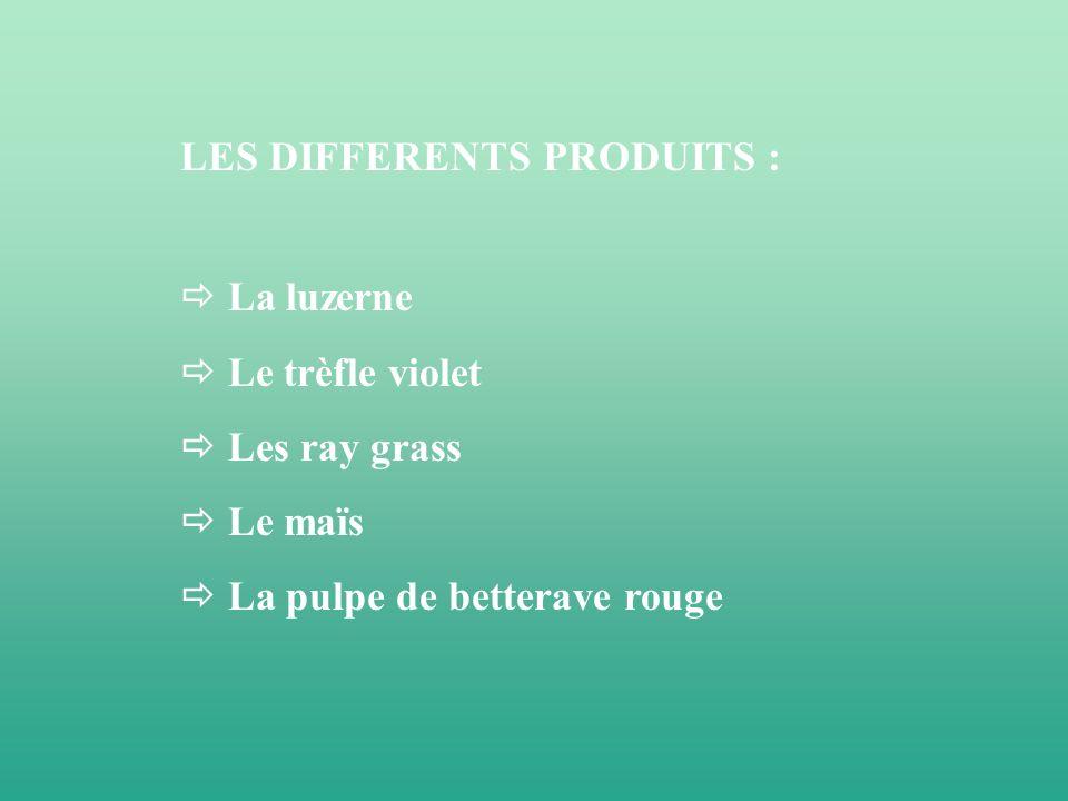 LES DIFFERENTS PRODUITS : La luzerne Le trèfle violet Les ray grass Le maïs La pulpe de betterave rouge