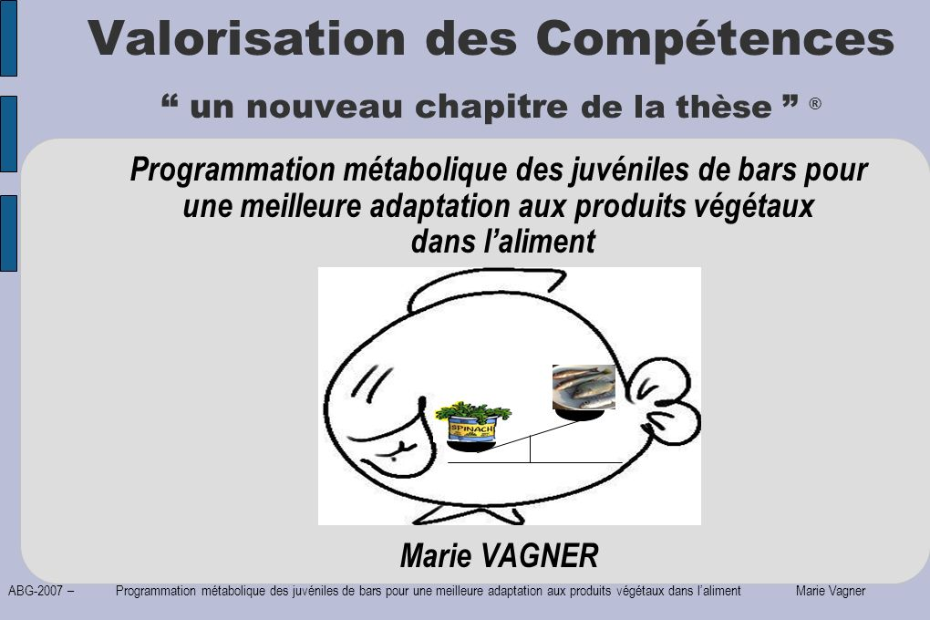 ABG-2007 – Programmation métabolique des juvéniles de bars pour une meilleure adaptation aux produits végétaux dans laliment Marie Vagner Déroulement, gestion, coût du projet Evaluation du coût