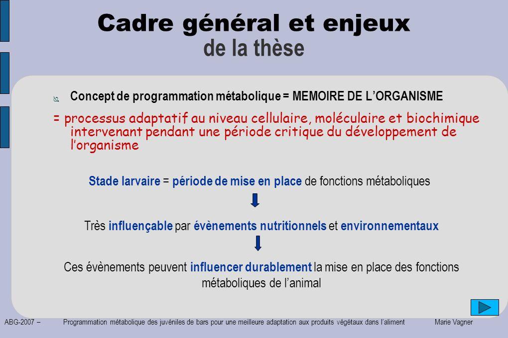 ABG-2007 – Programmation métabolique des juvéniles de bars pour une meilleure adaptation aux produits végétaux dans laliment Marie Vagner Cadre généra