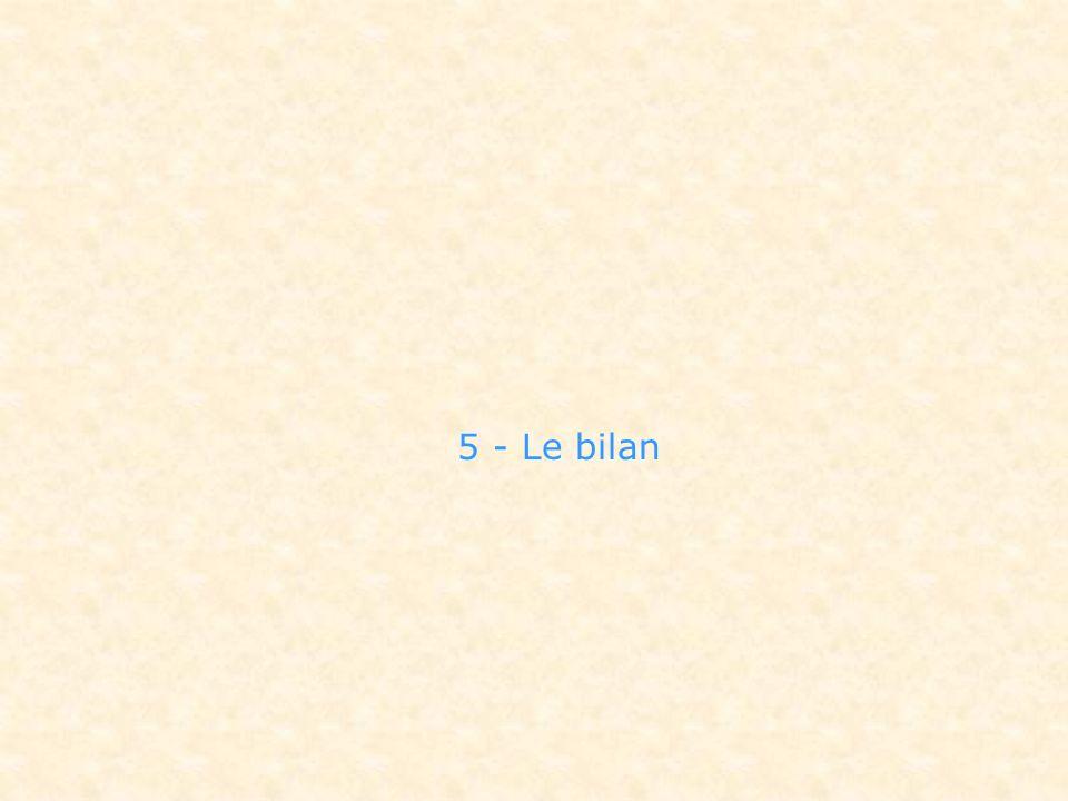 5 - Le bilan