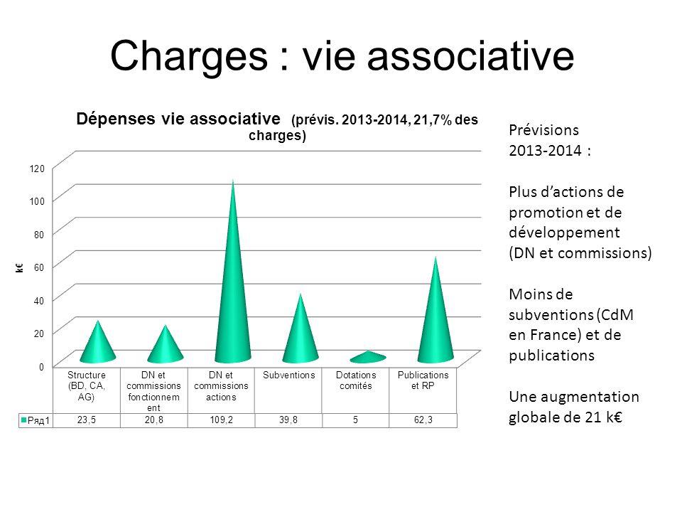 Prévisions 2013-2014 : Plus dactions de promotion et de développement (DN et commissions) Moins de subventions (CdM en France) et de publications Une