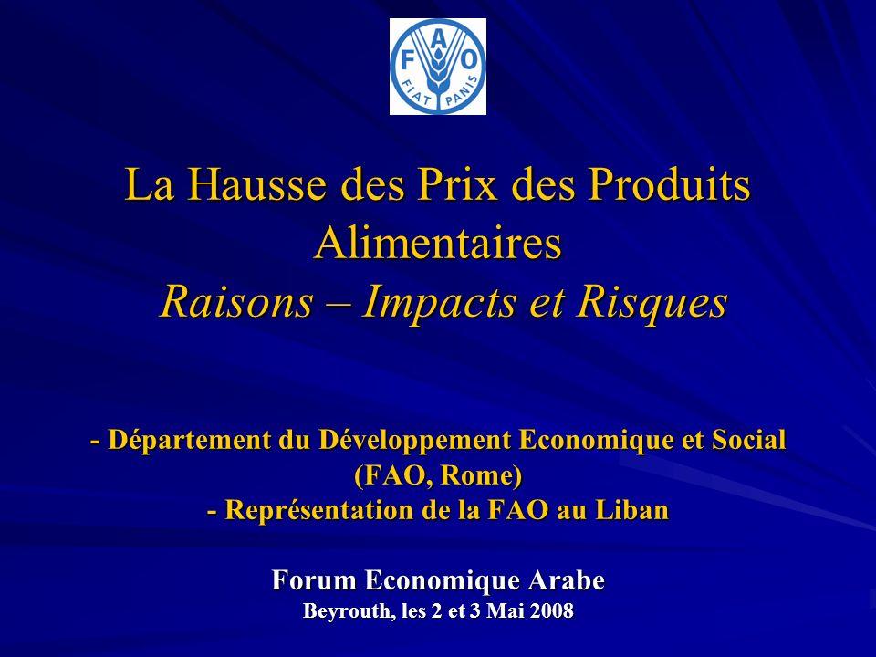 La Hausse des Prix des Produits Alimentaires Raisons – Impacts et Risques - Département du Développement Economique et Social (FAO, Rome) - Représenta