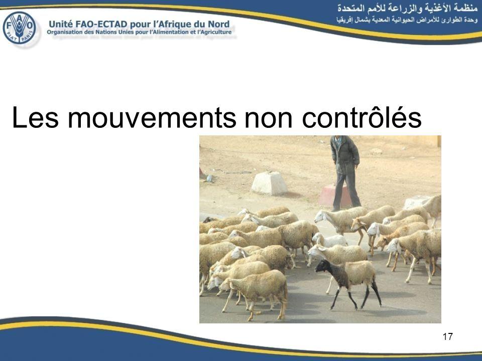 Les mouvements non contrôlés 17