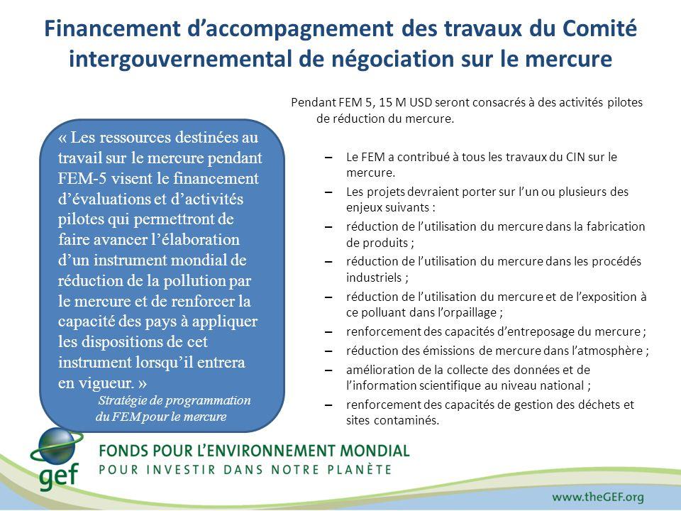 Financement daccompagnement des travaux du Comité intergouvernemental de négociation sur le mercure Pendant FEM 5, 15 M USD seront consacrés à des activités pilotes de réduction du mercure.