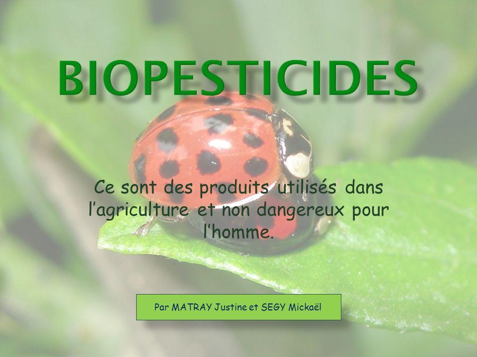 Un biopesticide peut être défini comme étant tout produit phytosanitaire issu dun organisme vivant (plante ou micro-organisme) ou dun sous-produit brut de cet organisme (extraits de plantes ou toxines de bactéries).