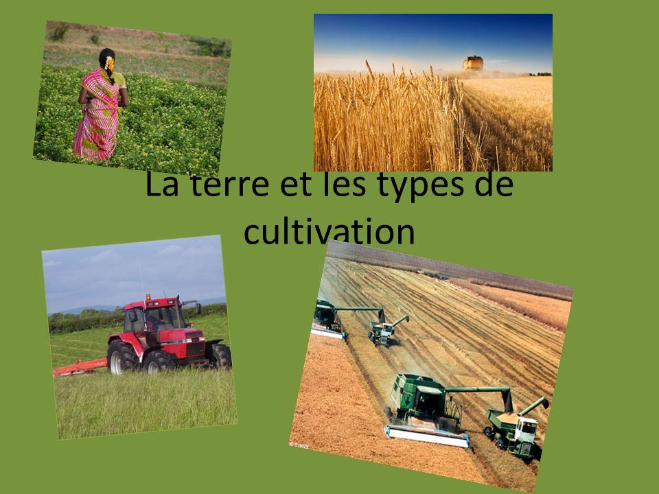 La terre et les types de cultivation