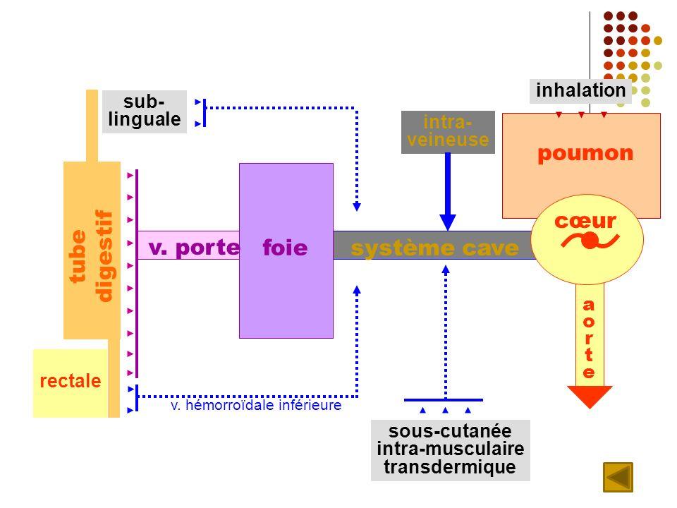 foie poumon sous-cutanée intra-musculaire transdermique v.
