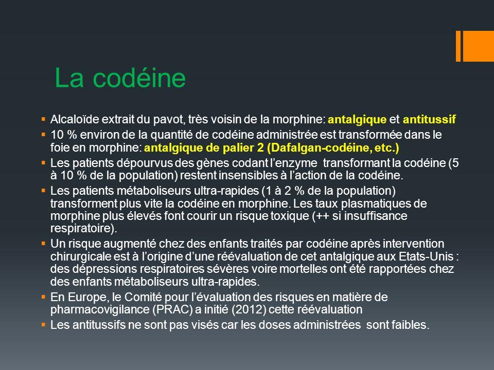 La codéine Alcaloïde extrait du pavot, très voisin de la morphine: antalgique et antitussif 10 % environ de la quantité de codéine administrée est transformée dans le foie en morphine: antalgique de palier 2 (Dafalgan-codéine, etc.) Les patients dépourvus des gènes codant lenzyme transformant la codéine (5 à 10 % de la population) restent insensibles à laction de la codéine.