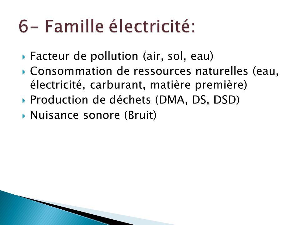 Facteur de pollution (air, sol, eau) Consommation de ressources naturelles (eau, électricité, carburant, matière première) Production de déchets (DMA, DS, DSD) Nuisance sonore (Bruit)