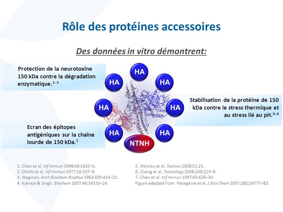 Stabilisation de la protéine de 150 kDa contre le stress thermique et au stress lié au pH. 4–6 Ecran des épitopes antigéniques sur la chaîne lourde de