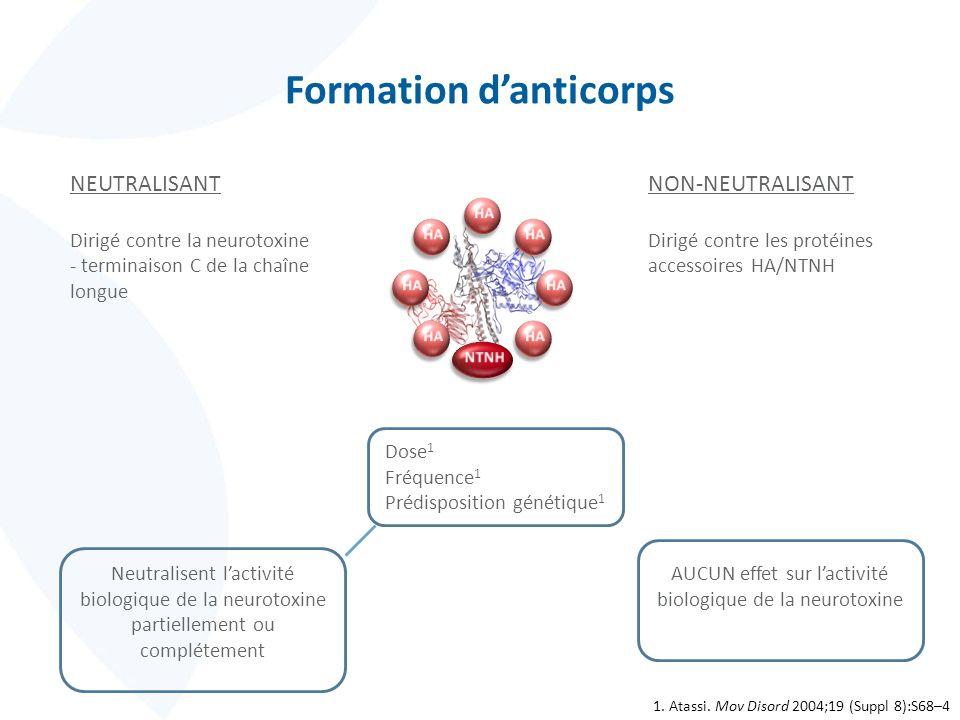 Formation danticorps NEUTRALISANT Dirigé contre la neurotoxine - terminaison C de la chaîne longue NON-NEUTRALISANT Dirigé contre les protéines access
