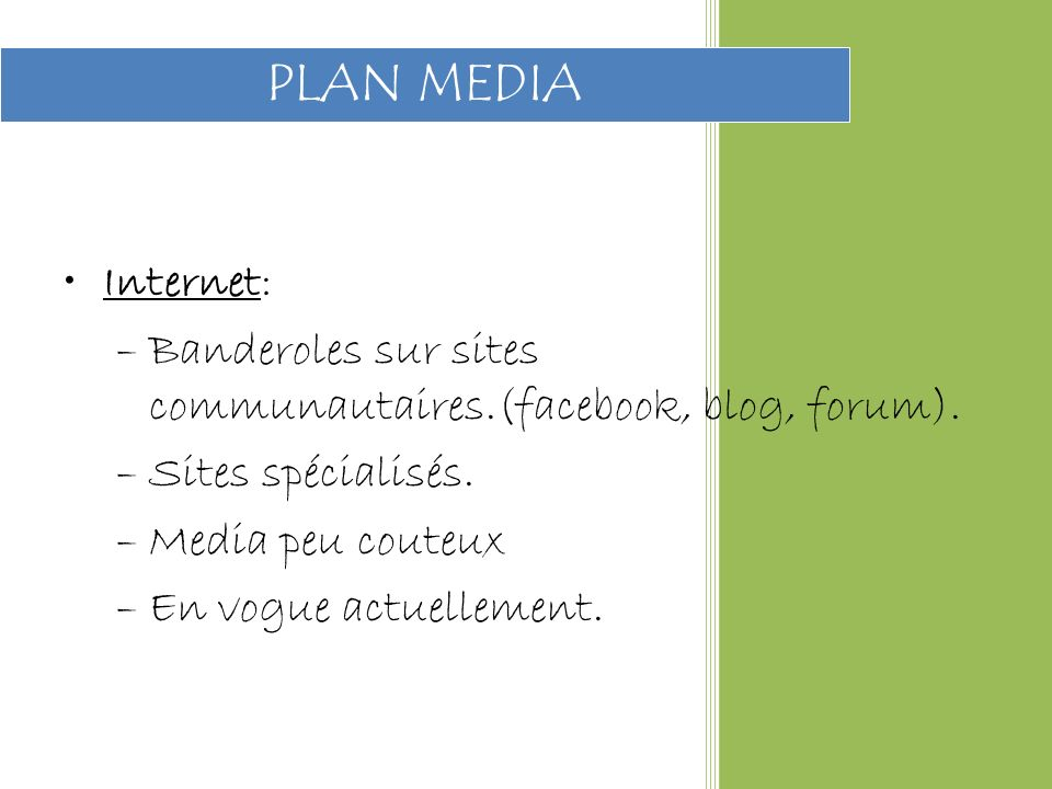 Internet: –Banderoles sur sites communautaires.(facebook, blog, forum).