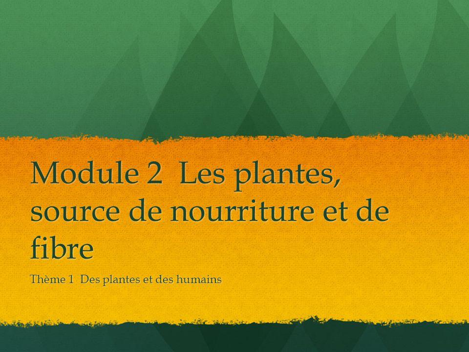 Module 2 Les plantes, source de nourriture et de fibre Thème 1 Des plantes et des humains