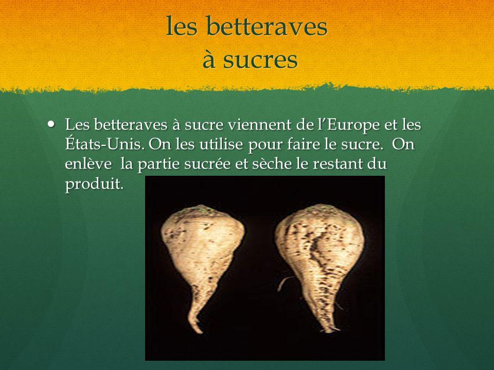 les betteraves à sucres Les betteraves à sucre viennent de lEurope et les États-Unis. On les utilise pour faire le sucre. On enlève la partie sucrée e