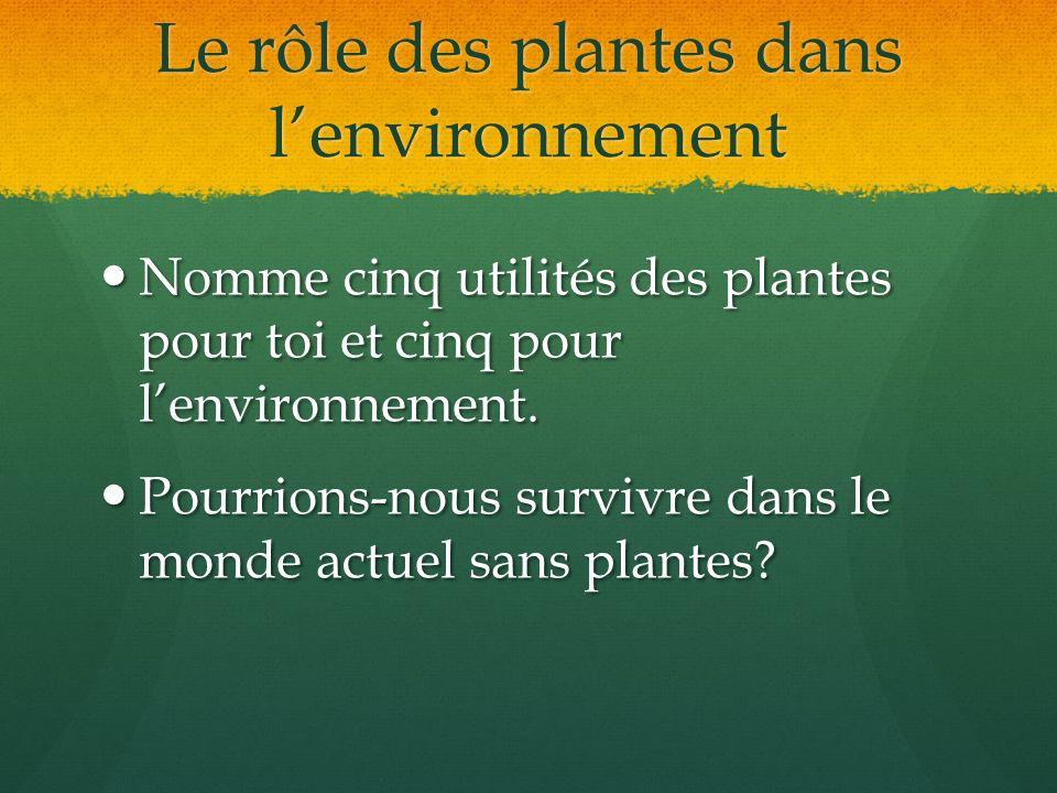 Le rôle des plantes dans lenvironnement Nomme cinq utilités des plantes pour toi et cinq pour lenvironnement. Nomme cinq utilités des plantes pour toi