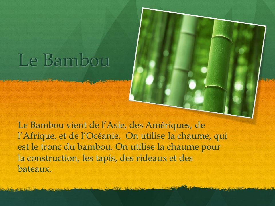 Le Bambou Le Bambou vient de lAsie, des Amériques, de lAfrique, et de lOcéanie. On utilise la chaume, qui est le tronc du bambou. On utilise la chaume