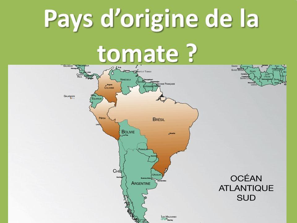 Pays dorigine de la tomate ?