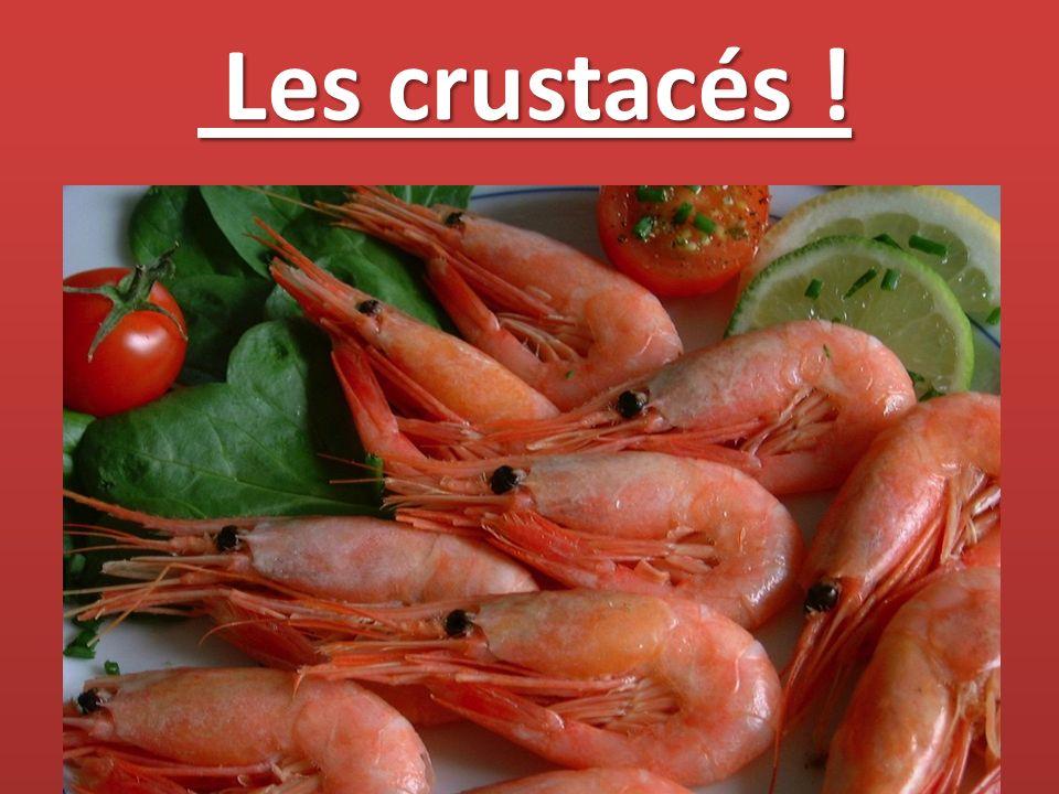 Les crustacés ! Les crustacés !