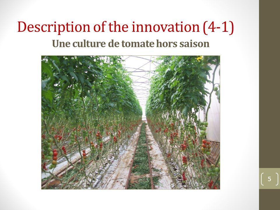 Une culture de tomate hors saison 5 Description of the innovation (4-1)