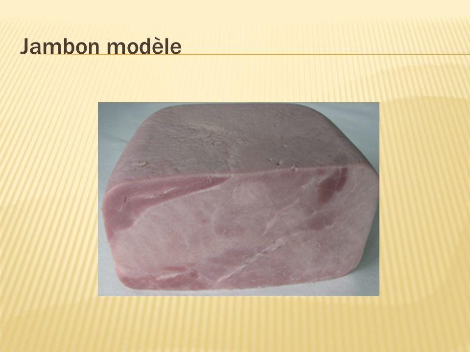 Jambon modèle